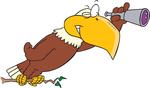 Eagle Eye work inspections