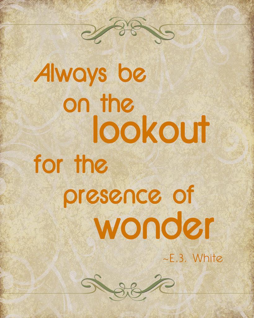 EB White Quote Download