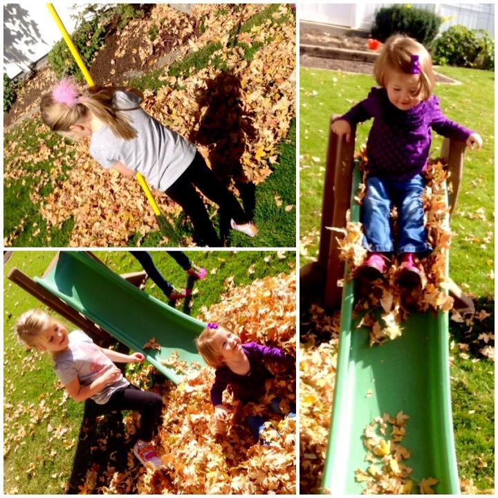 Fall Fun! www.mytributejournal.com