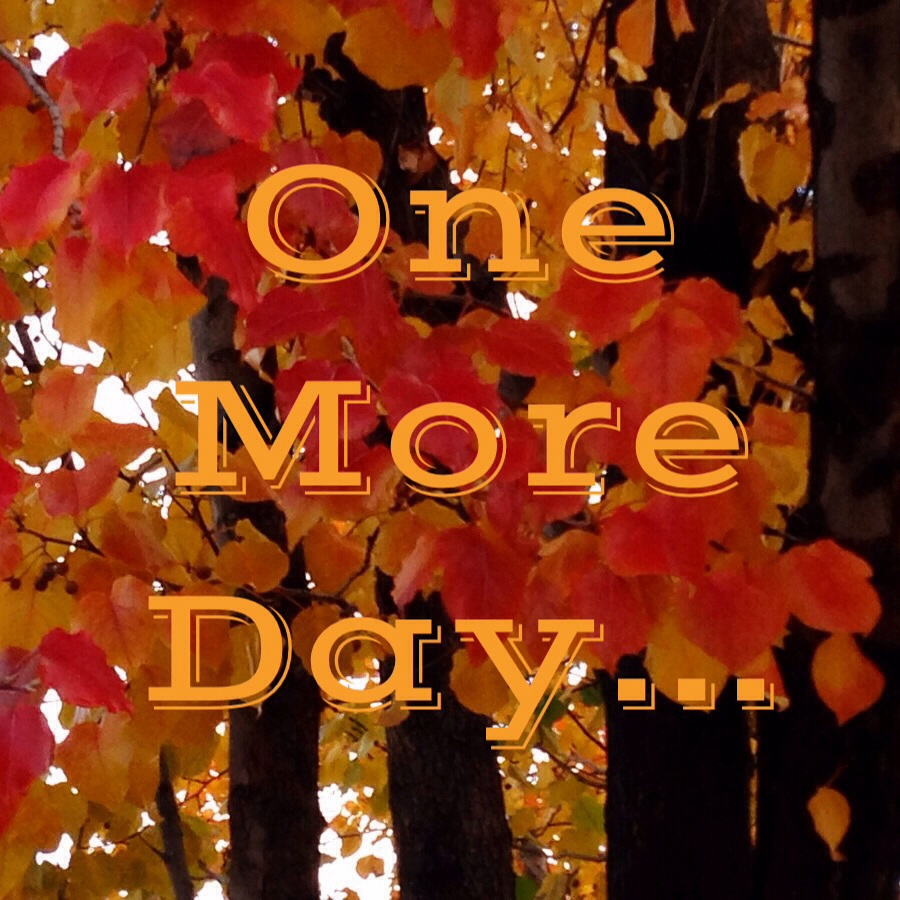 One More Day... www.mytributejournal.com
