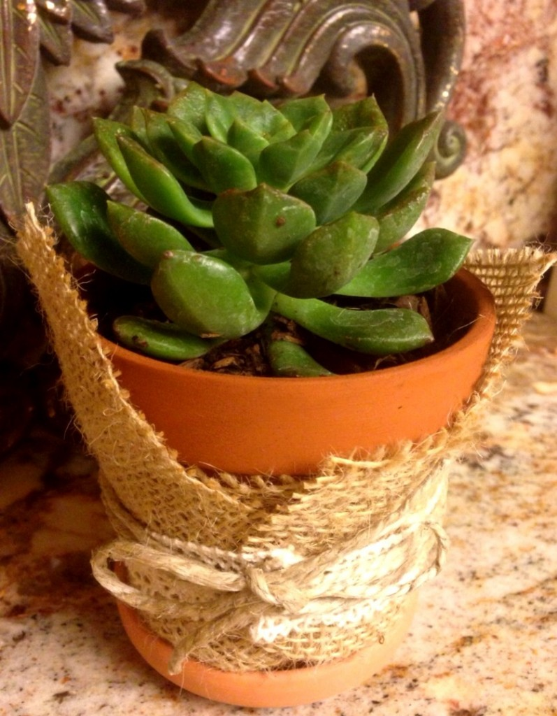 Garden Gifts! www.mytributejournal.com