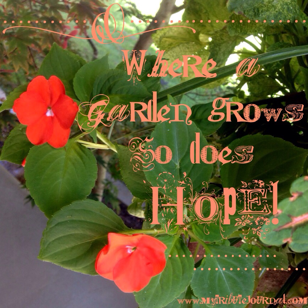 """Garden quotes: """"Where A Garden Grows So Does Hope!"""" www.mytributejournal.com"""