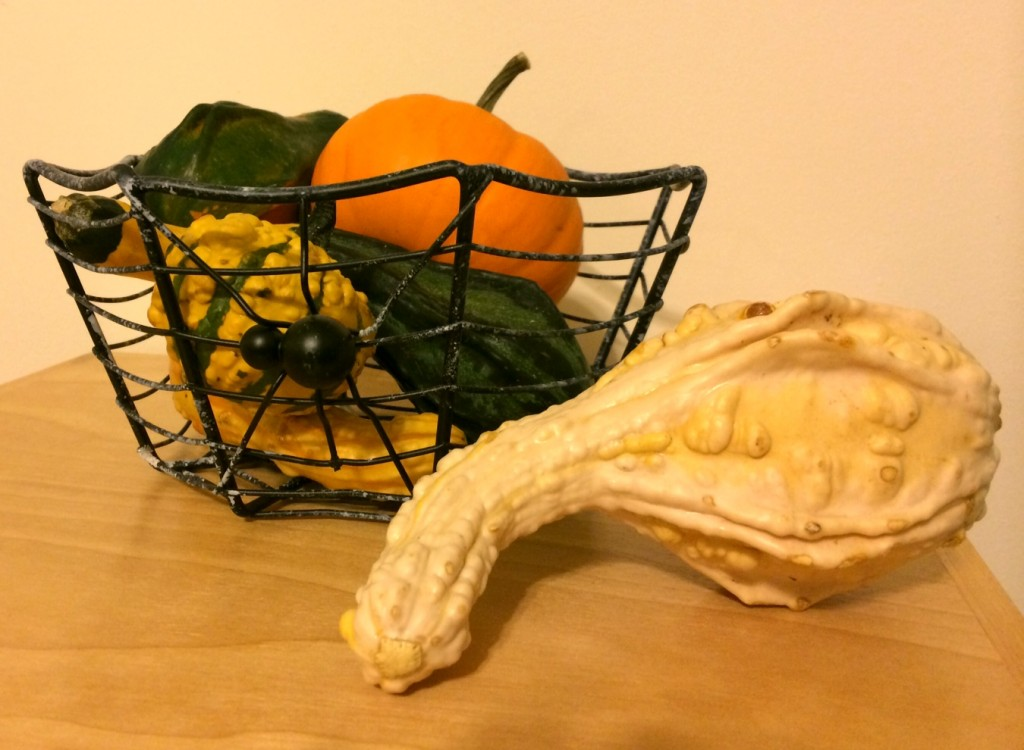 Simple Fall Decorations www.mytributejournalc.om