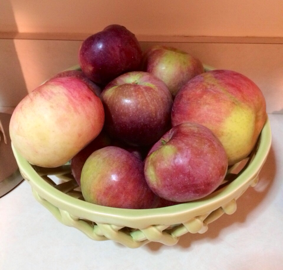 Fresh picked apples! www.mytributejournal.com