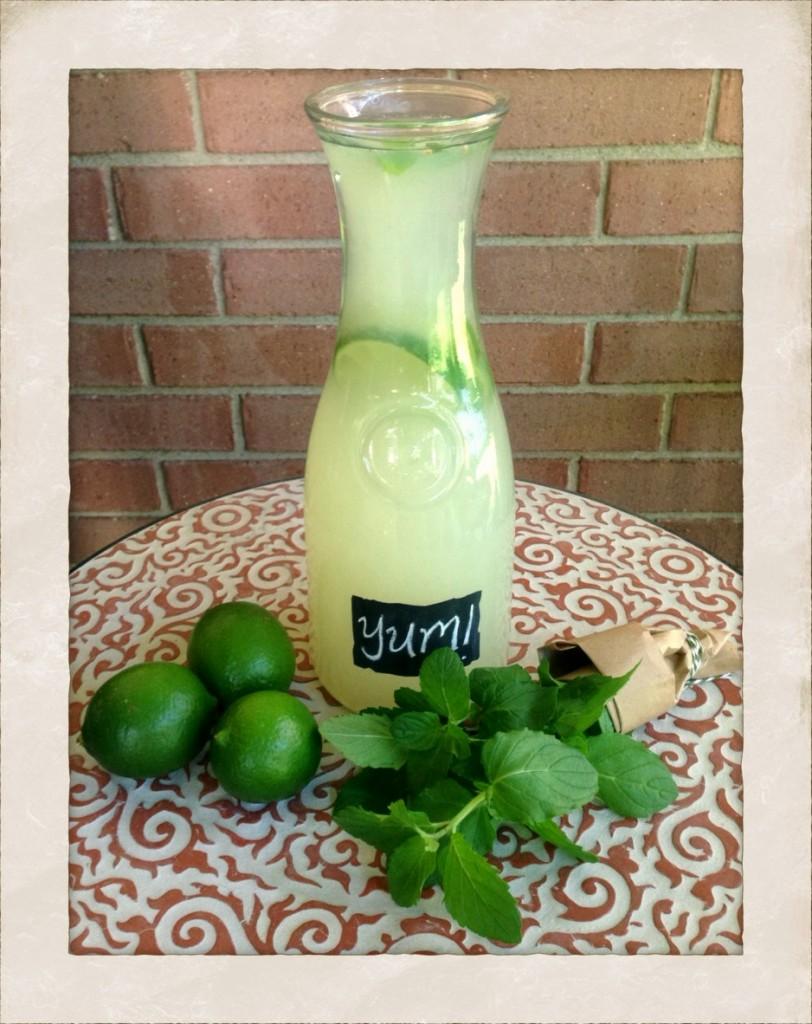 Mint Limeade Recipe! www.mytributejournal.com