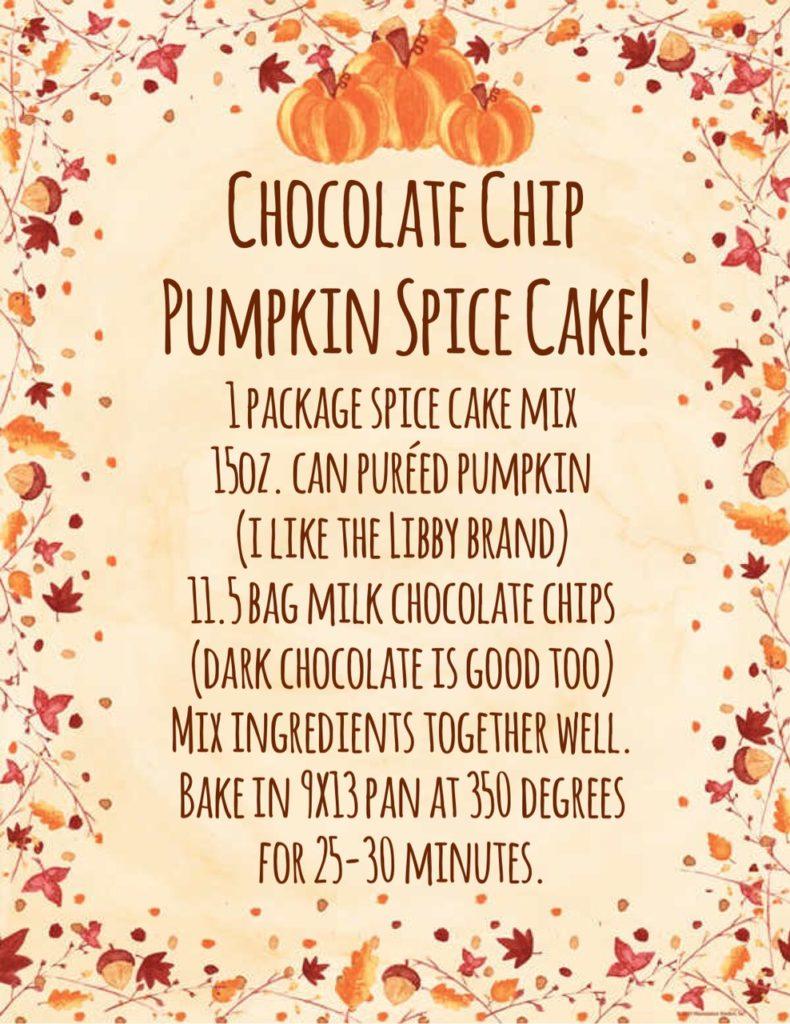 Chocolate Chip Pumpkin Spice Cake recipe!