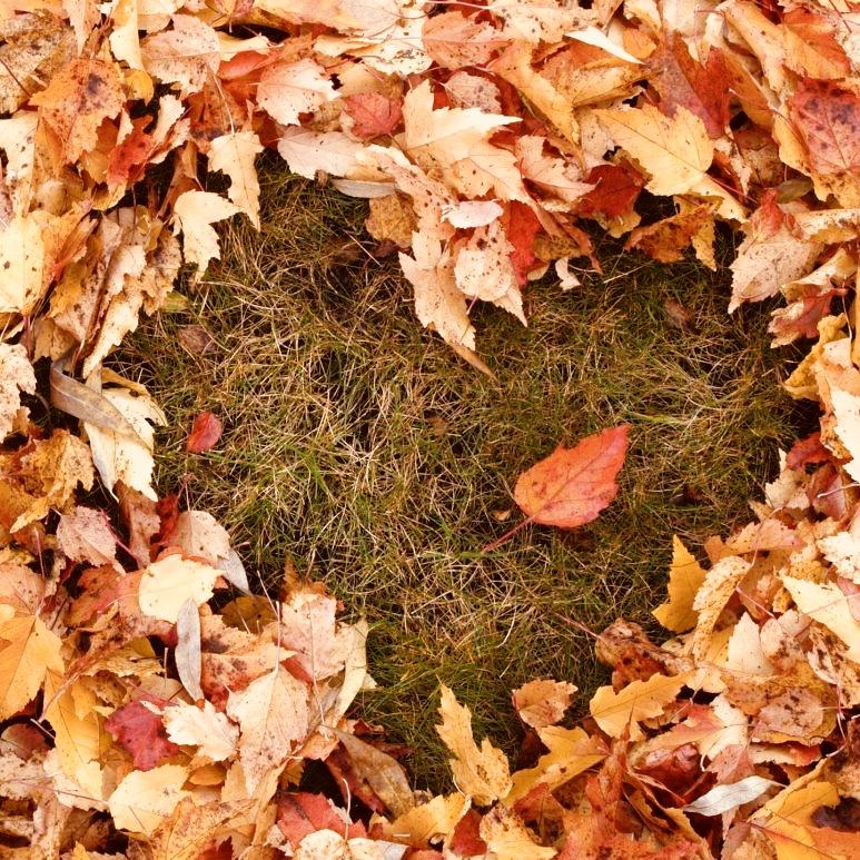 I love fall!