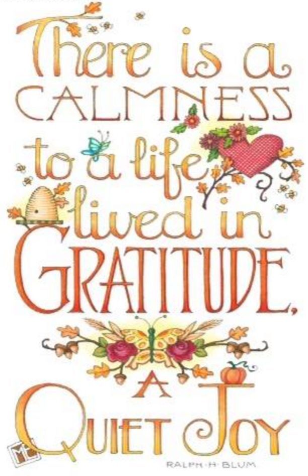 Living a life of gratitude quote.